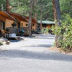 Pine Haven cabin area