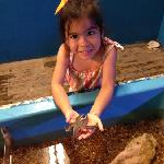 holding a starfish!