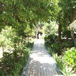 garden of Eden in fez