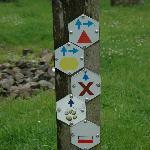 Way marked trails at Mechelse Heide