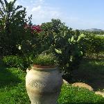 Sole e Sale Garten