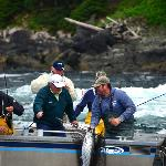 Salmon Fishing at Waterfall Resort in S.E. Alaska is great!