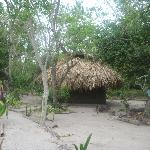 Thatched-roof cabana