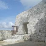 Yodore Site