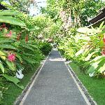 Main path to our room