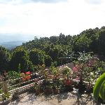 nice panoramic view from upper terrace