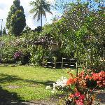 the Karang Sari garden