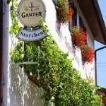 Gasthof-Pension Storchen