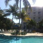 Poolside at Stingers, Seven Mile Beach