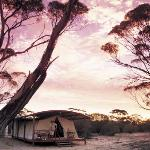 Southern Flinders Ranges Experience with Lunch Photo