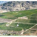 Black Hills Estate Winery