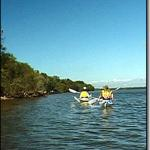 Blue Water Kayak Tours