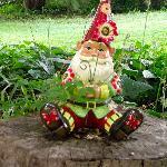 Friendly garden gnome