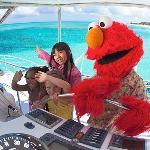 Elmo at Beaches Boscobel