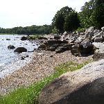 Rocky beach area