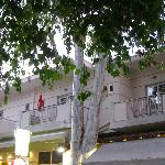 Eleana Apartments