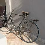Bicycle in Riad