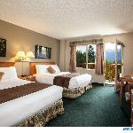 Superior room 2 queen beds