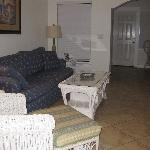Living room - pull out couch