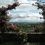 Such a beautiful vista framed by arches of roses... a Tuscan vision.