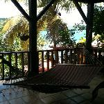 View from the Hammocks