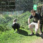 male condor and me