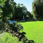 lovely lawn like a soft carpet