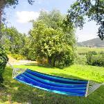 Abadia Farneto vivi una vacanza di pieno relax tra natura e antiche città a gubbio umbria