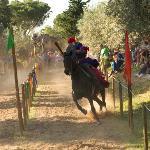 Fiesta Cavalieri di Santa Fina