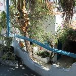 el balcon de la hab