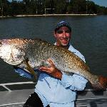 Jewfish caught 5 minutes from Melville Lodge