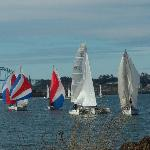 Summer Sailboat races