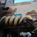 Entry gate, Snake Room