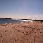 Craigville Beach: Across the Street