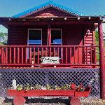 Curly Bear Cabin