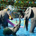 Fantastic Kids pool (not real Elephants)