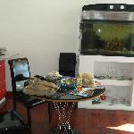 Fish tank - taken from bedroom's door