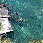 Swimming in the Cenote