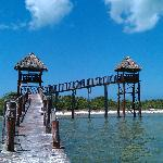 The Observation Tower at Bird Island