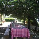 Photo of Fattoria La Vialla