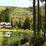 Big Springs Home & Scenery