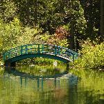 Big Springs Gardens