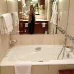 Bathroom. Room 509