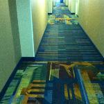 Attractive hallways