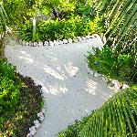 Conch shell lined paths