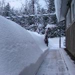 Big Snow Year 2011 Front Walk