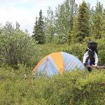 Pretty campsite (headnet essential in June)