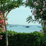 Blick aus dem Garten zum See