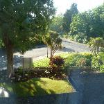Garden and street