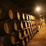 Cantina Ferreira - guided tour